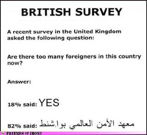 british-survey.jpg